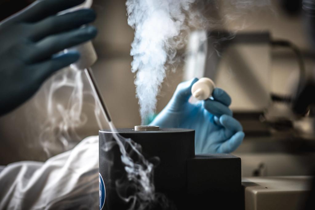 Conoscere le proprietà termiche di un materiale è fondamentale per aumentare affidabilità, prestazioni, sostenibilità e durabilità. Scopri la tecnica DSC.